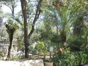 garden tomb (18) (Medium)