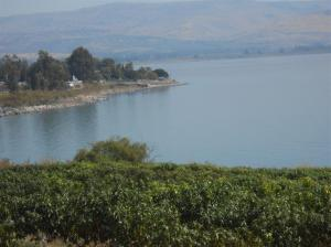 Sea of Galilee (2) (Medium)