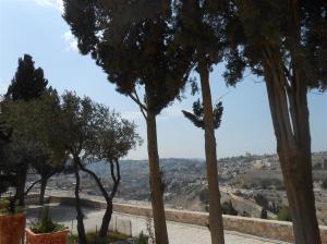 view where Jesus wept over Jerusalem (2) (Medium)