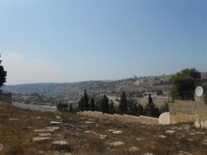 view where Jesus wept over Jerusalem (Medium)
